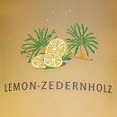 Bodysol Aroma-Dusche Lemon Zedernholz