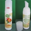 Alterra Waschschaum (für normale und Mischhaut)