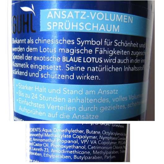 test spezialstyling guhl langzeit volumen blauer lotus ansatz volumen spr hschaum. Black Bedroom Furniture Sets. Home Design Ideas