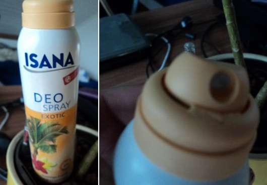 """ISANA Deo Spray """"Exotic"""""""