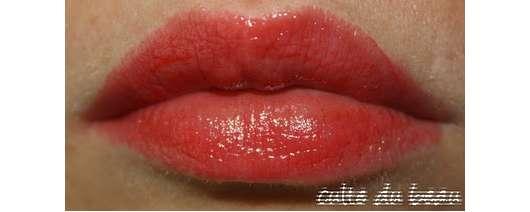 Test Lippenstift Chanel Rouge Coco Shine Lipstick Farbe 63