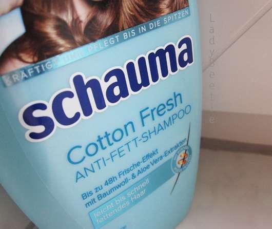 test shampoo schauma cotton fresh anti fett shampoo testbericht von ladybeetle. Black Bedroom Furniture Sets. Home Design Ideas