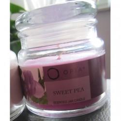 Produktbild zu PRIMARK Beauty Opia Sweet Pea Scented Jar Candle