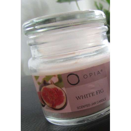 Primark Beauty Opia White Fig Scented Jar Candle