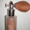 The Body Shop The Sparkler, Farbe: Dazzling Copper (LE)