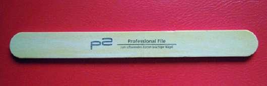 p2 Professional File