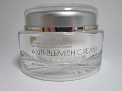 Produktbild zu Methode Brigitte Kettner Anti-Blemish Cream