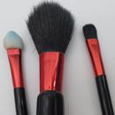essence minis 2go brush set
