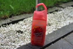 Produktbild zu Fruttini Strawberry Starfruit Shower Sorbet