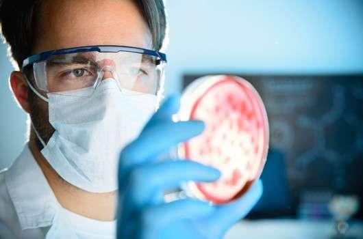 TSS und das humane Mikrobiom
