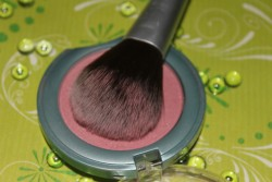 for your beauty Professional Rougepinsel