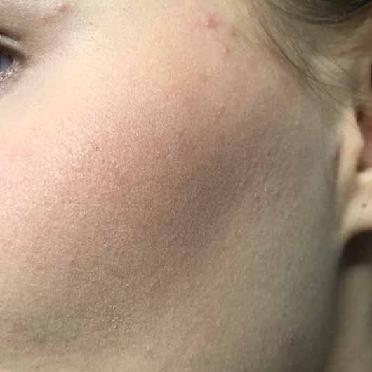 Make up Factory Blush Brush - Rouge mit dem Pinsel verblendet