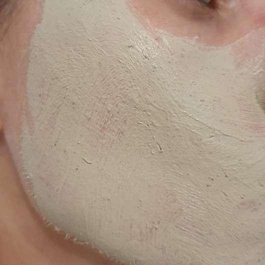 Schaebens Totes Meer Schlamm Maske - Maske frisch aufgetragen
